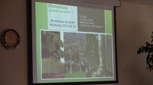 Biomassza és pellet workshop (2015.09.10, BKIK)